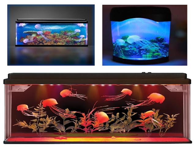 3.Jellyfish Tankको लागि तस्बिर परिणाम
