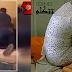 العاصمة: بسبب إضراب في المطار… قرّر العودة إلى منزله فوجد زوجته تخونه مع فنان تونسي مشهور