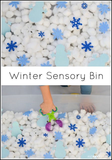 Winter Sensory Bin And Next Comes L