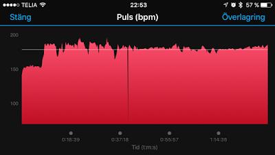 puls%2B703%2Bruegen.PNG