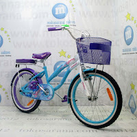City Bike Family Sparks 20 Inci