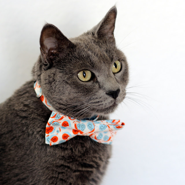 Snail Cat and Kitten Bow tie from Because I'm Me