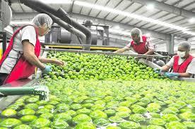 Crecen 54 por ciento las exportaciones de Jalisco en esta administración