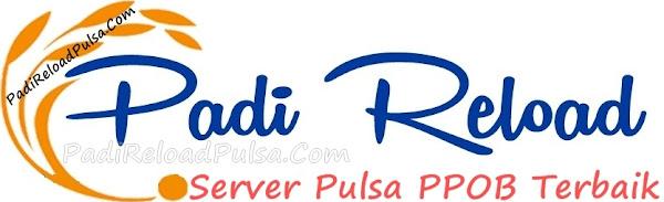 PadiReloadPulsa.Com Web Resmi Server Padi Reload Pulsa Termurah Saat Ini