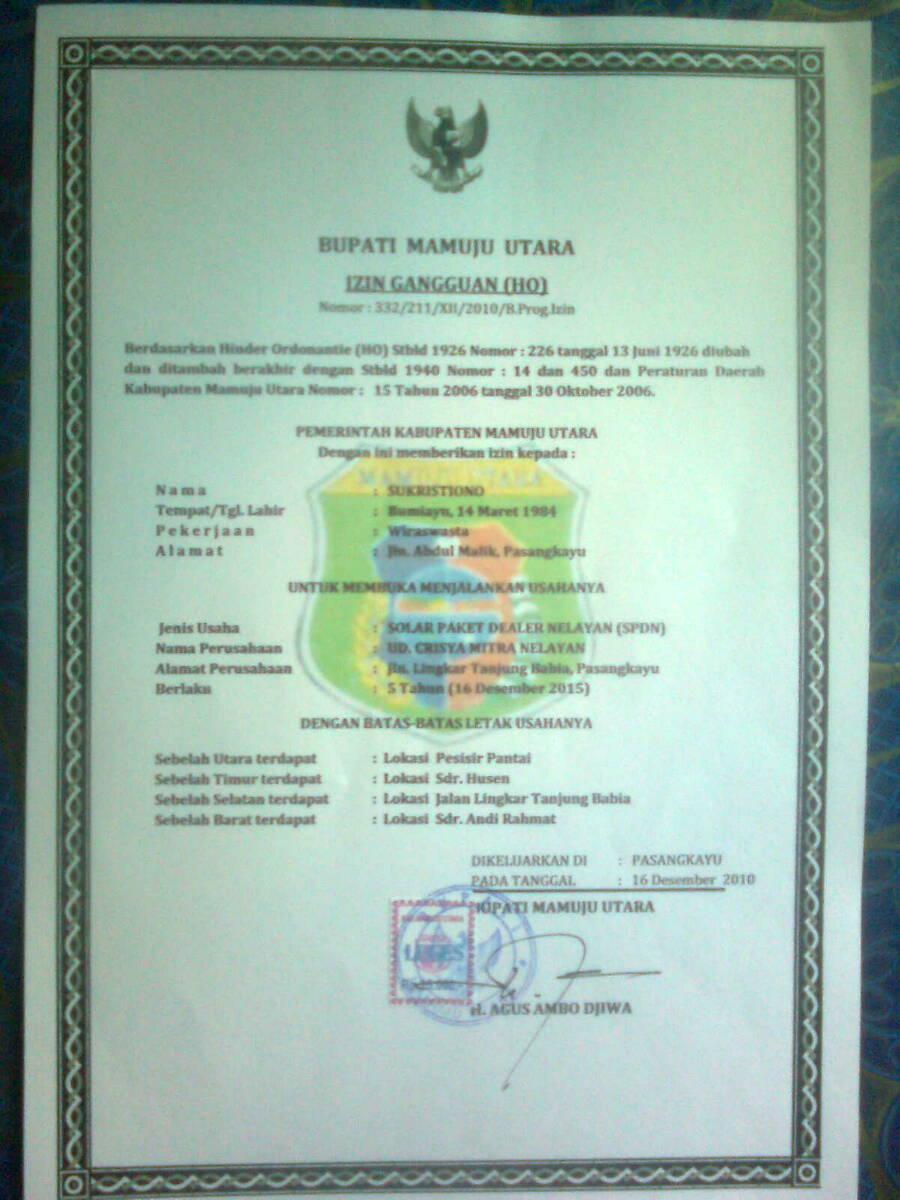 Dyaz Sofyandi: Softcopy