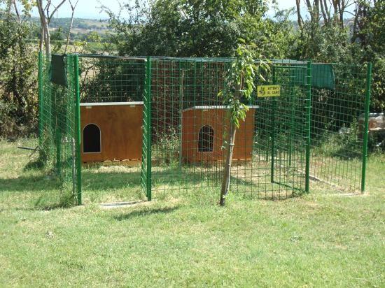 Come Costruire Un Recinto Per Cani Edilizia In Un Click