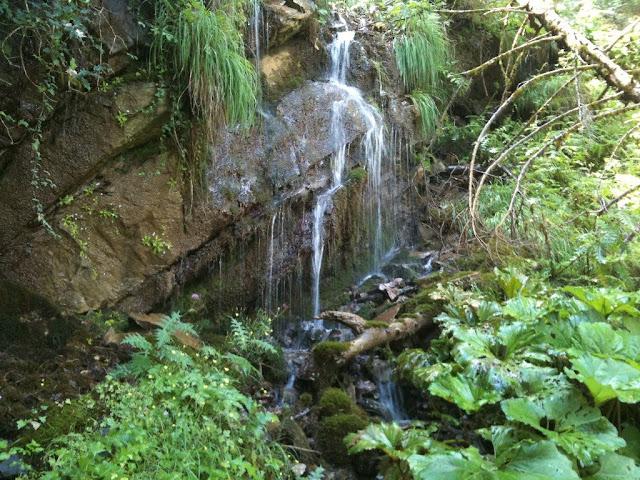 """Θεσπρωτία: Η """"Μάνα του νερού"""" - Η μεγαλύτερη πηγή της Μουργκάνας"""