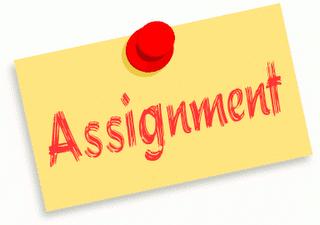 HRM 300 Week 4 Team Assignment