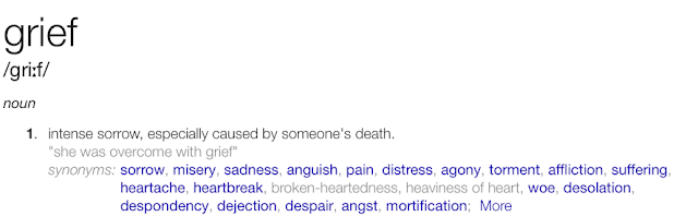 grief, my mummy spam, mymummyspam, saddness, death, loss, family, love, loved one, definition, the word grief,