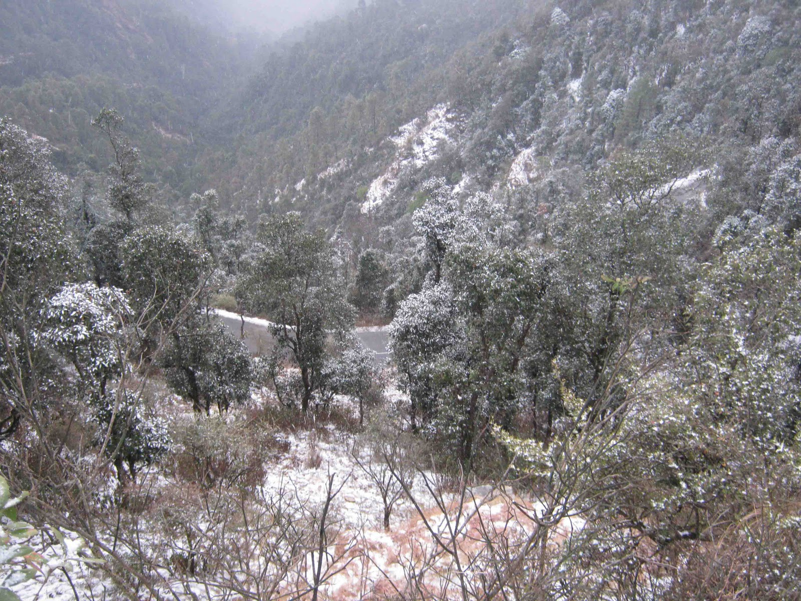 Mussoorie_HDwalle  HD Wallpapers High Definition  Free