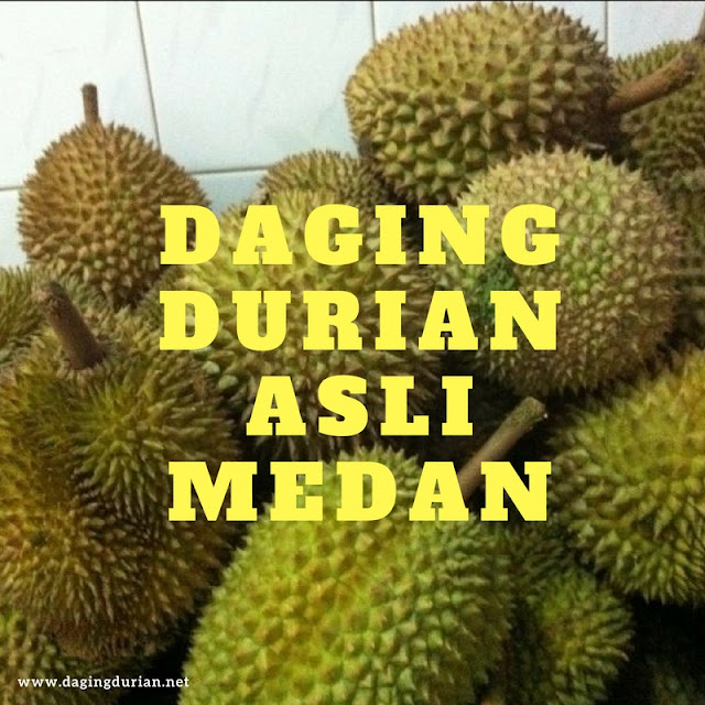 beli-disini-daging-durian-medan-terlegit-di-ngasem