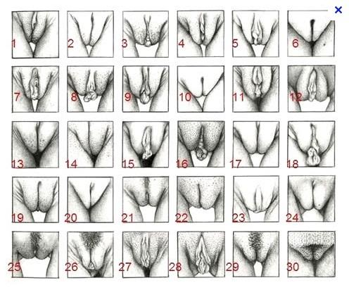 Decorar o preservativo em um pequeno pênis