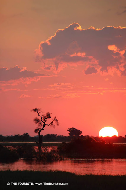 Red sunset over the Chobe River in the Chobe National Park in Botswana