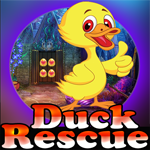 Games4King Duck Rescue