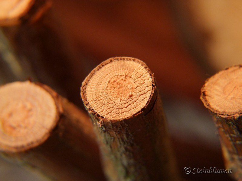 Holzkranz