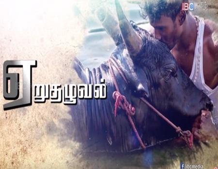 Jallikattu Theme – IBC Tamil