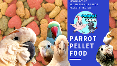 Parrot Pellet Food | Higgin's InTune All Natural Parrot Food Review