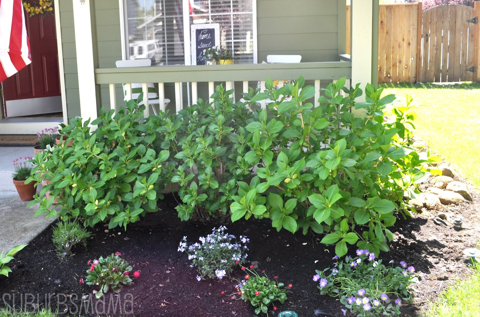 Put Do Mulch Down Flowers Planting You