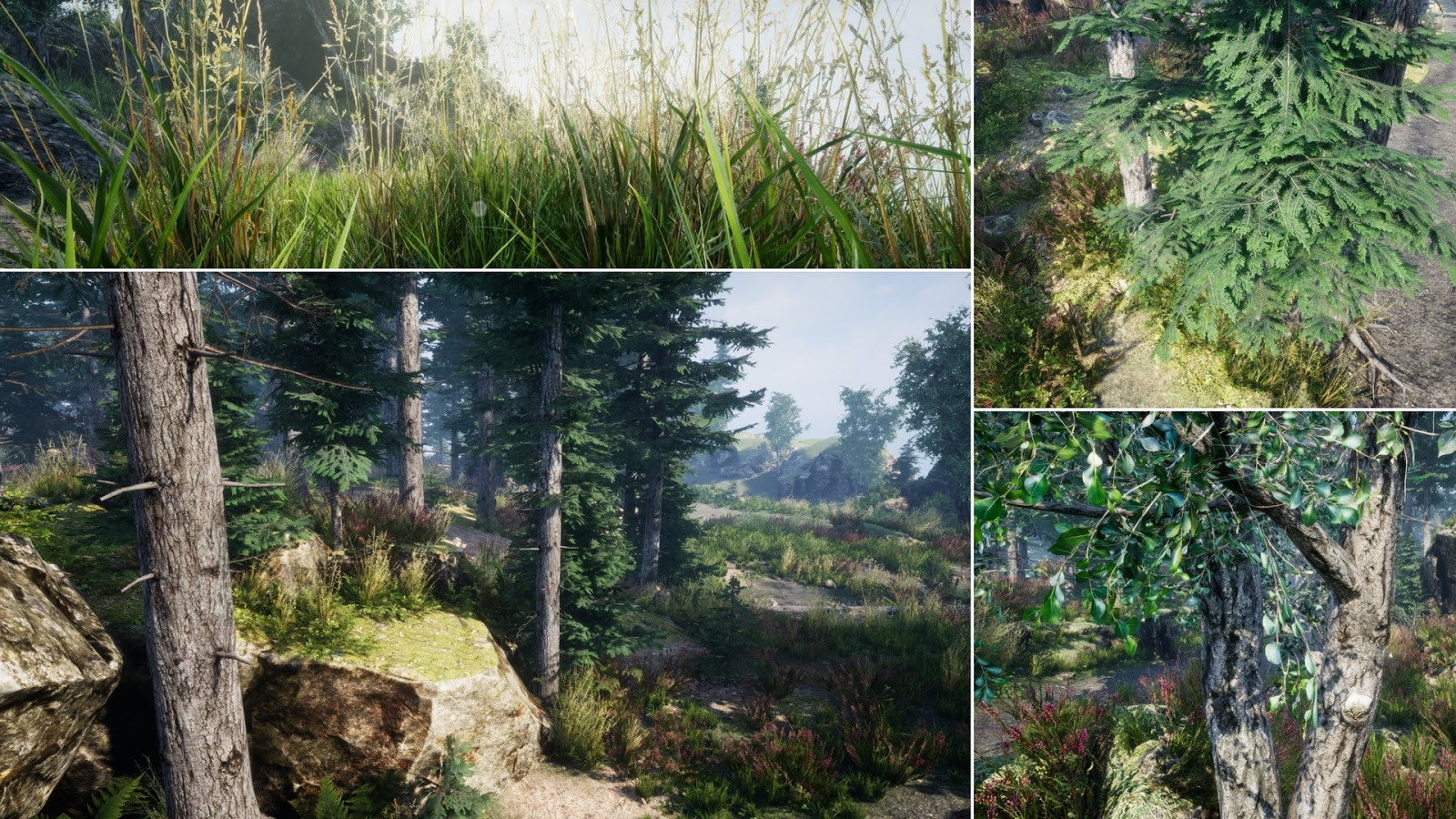 Exciting Foliage Library for UE4 | Computer Graphics Daily News