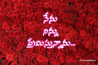 Beautiful red roses background Love proposal in Telugu.