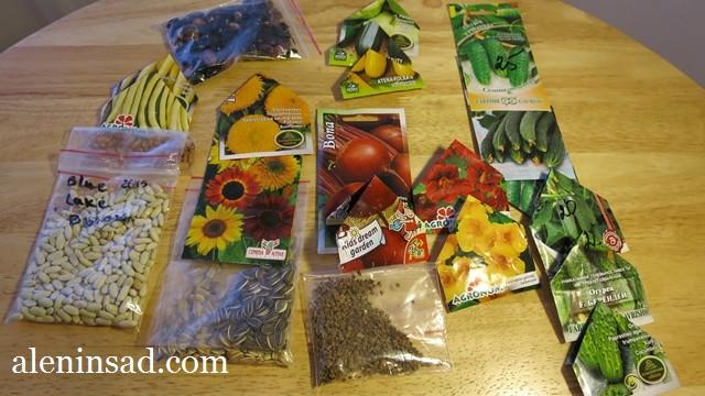 аленин сад, семена, сорта фасоли, подсолнечника, огурцов, свеклы, настурции, кабачков для посева в мае, в открытый грунт