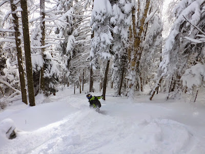Skiing the glades at Gore Mountain, Saturday 12/13/2014.  The Saratoga Skier and Hiker, first-hand accounts of adventures in the Adirondacks and beyond, and Gore Mountain ski blog.