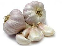 Cara Pembuatan Pestisida Nabati Dari Bawang putih (Allium sativum L)