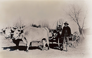 https://www.lds.org/media-library/images/pioneers-oxen-team-covered-wagon-255503?lang=eng
