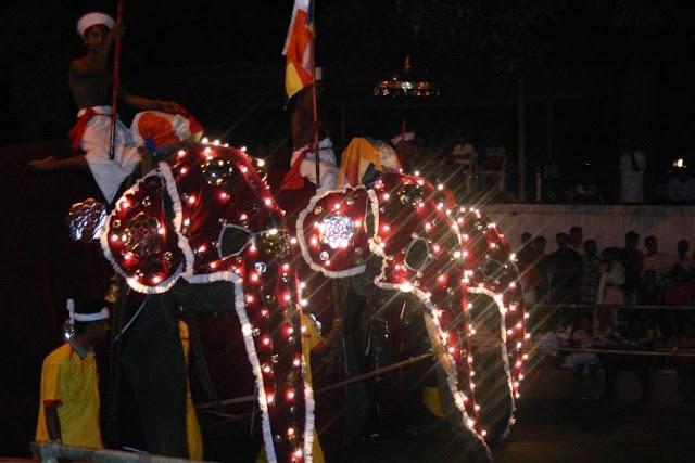 يشمل المهرجان عروضا بالفيلة في شكل خمس مسيرات