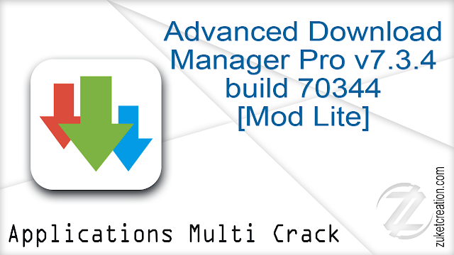 Advanced Download Manager Pro v7.3.4 build 70344 [Mod Lite] Apk