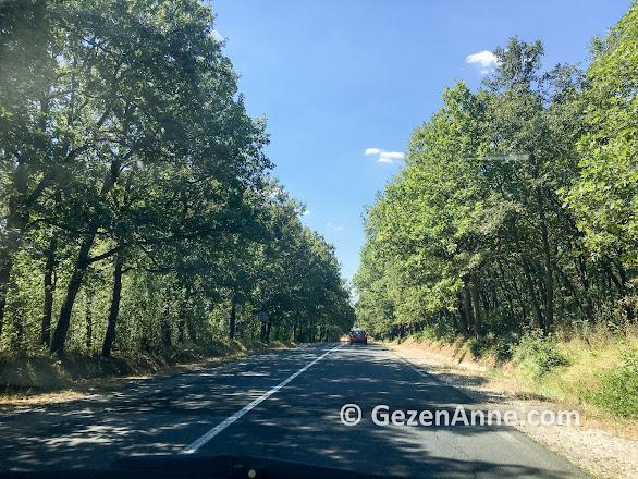 yemyeşil Bulgaristan yolları