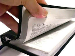 Versículos e Curiosidades Bíblicas!