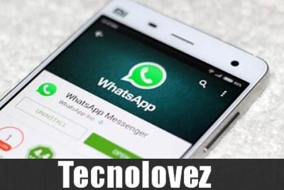 WhatsApp - Arriva l'applicazione nativa per PC: non servirà più collegare lo smartphone