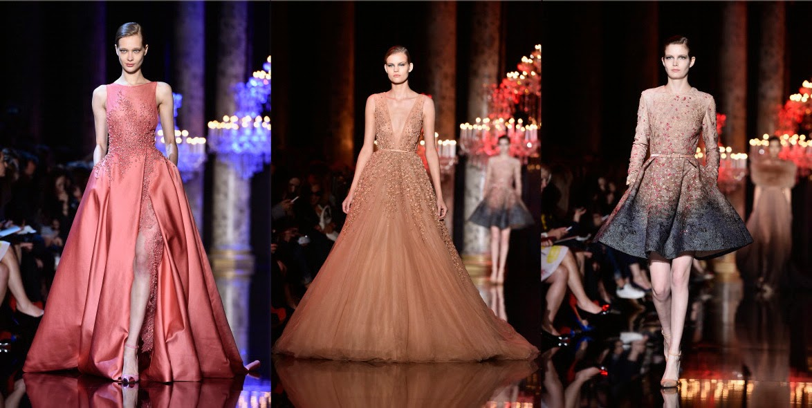 Eniwhere Fashion - Elie Saab - Paris3