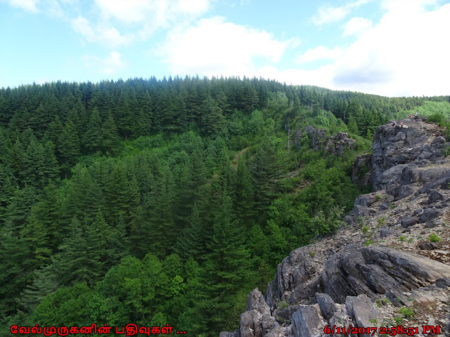 Angels Rest Trail Oregon