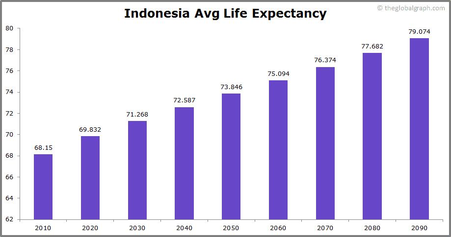 Indonesia  Avg Life Expectancy
