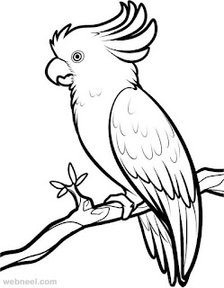 Best Collection Of Bird On Forest Coloring Pages Images