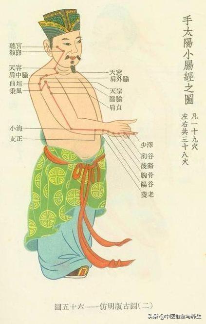 經絡| 要想肩頸好,小腸經疏通不能少,這三個穴位最容易堵塞!(肩背酸痛)