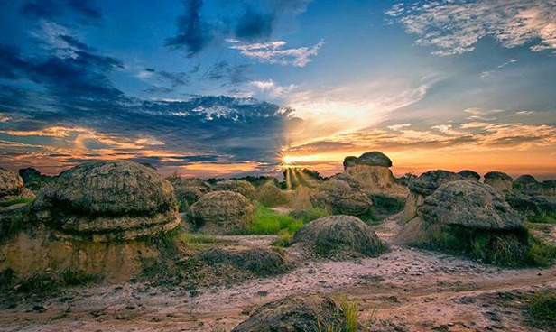 Bukit Jamur Gresik Jawa Timur : Harga Tiket Masuk, Lokasi, Jam Buka Terbaru 2019