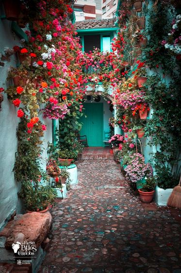 Fiesta Patios Córdoba. San Basilio, 40 - Ruta Alcazar Viejo Modalidad: Arquitectura antigua
