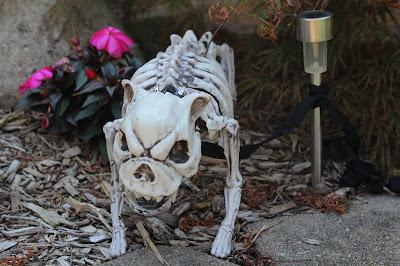 Halloween Decorations, Oriental Trading, DIY, cheap, for kids, yard, vintage, elegant, cute, indoor, easy, creepy,