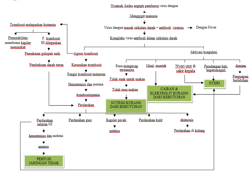 A Review on Dengue and Treatments