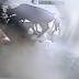 Mujer Era Atacada Por Un Hombre Hasta Que Una Vaca Le Salvó La Vida