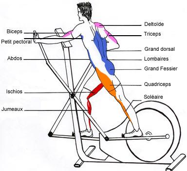 Audrey a dit...: Le vélo elliptique mobile