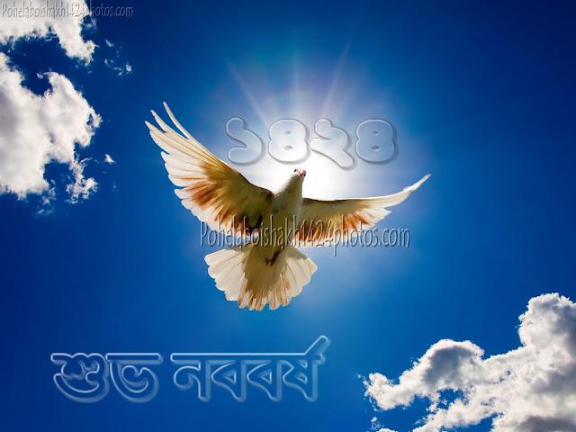 Subho Noboborsho 1424  Bangla Photos