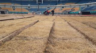 Rumput Stadion GBLA Rusak Parah, PB PON Anggarkan Rp400 Juta untuk Perbaikan
