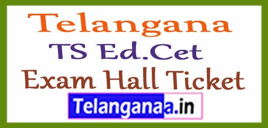 Telangana TS Ed.Cet HallTicket TSEd.Cet Hall Ticket