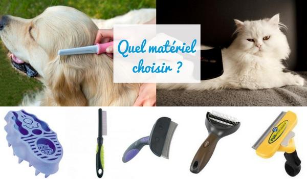 dogteur mat riel de toilettage pour chien et chat brosses peignes cardes trilles comment. Black Bedroom Furniture Sets. Home Design Ideas