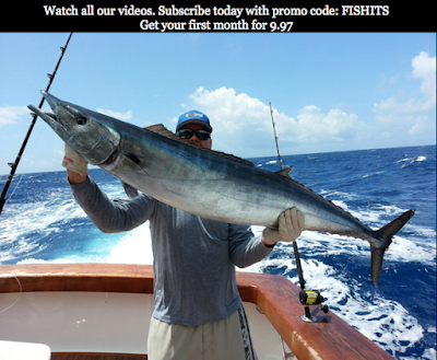 in the spread wahoo fishing videos