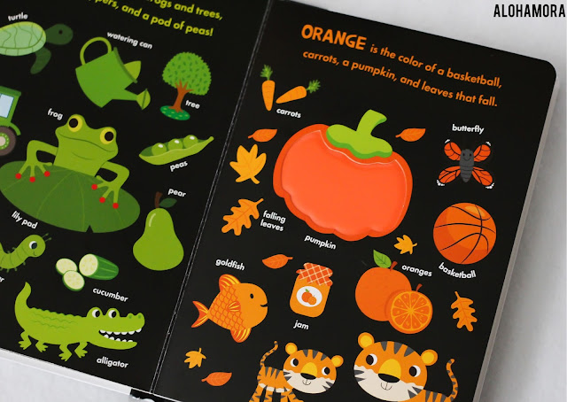 Touch-and-Feel Colors by Jonathan Litton earns 4.5 out of 5 stars in my honest book review.  This board book is perfect for babies through preschoolers. Alohamora Open a Book http://alohamoraopenabook.blogspot.com/